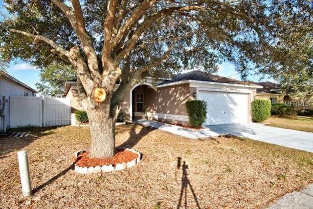 1311 Flexford Street, Brandon, FL 33511 (MLS #T2923897) :: Griffin Group