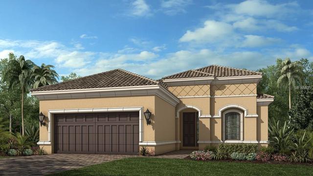5408 Manchini Street, Sarasota, FL 34238 (MLS #T2923910) :: TeamWorks WorldWide