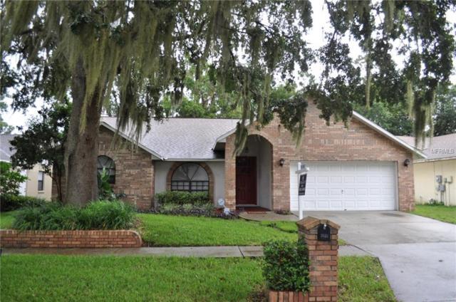 3528 Springville Drive, Valrico, FL 33596 (MLS #T2924057) :: Griffin Group