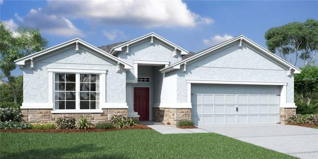 8068 Sequester Loop, Land O Lakes, FL 34637 (MLS #T2924100) :: Griffin Group