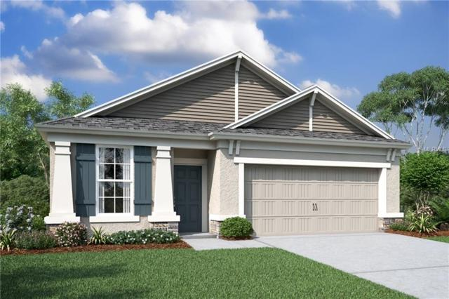 8060 Sequester Loop, Land O Lakes, FL 34637 (MLS #T2924105) :: Griffin Group