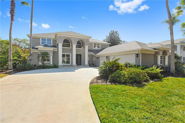 3906 S Nine Drive, Valrico, FL 33596 (MLS #T2924284) :: Griffin Group