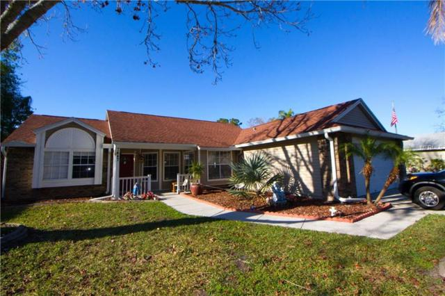 7447 Turtlebrook Lane, Trinity, FL 34655 (MLS #T2924302) :: Griffin Group