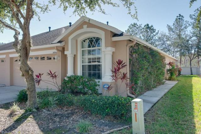 30942 Prout Court, Wesley Chapel, FL 33543 (MLS #T2924376) :: RE/MAX Realtec Group