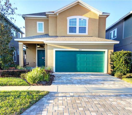 14121 Whisper Bench Way, Lithia, FL 33547 (MLS #T2924382) :: The Duncan Duo Team