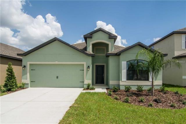 500 Delta Avenue, Groveland, FL 34736 (MLS #T2924425) :: RealTeam Realty