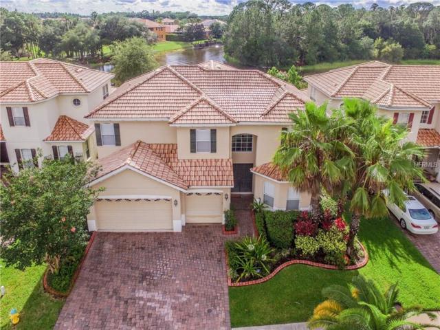 18026 Cozumel Isle Drive, Tampa, FL 33647 (MLS #T2924438) :: Team Bohannon Keller Williams, Tampa Properties