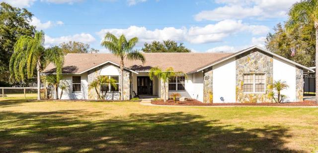7314 W Knights Griffin Road, Plant City, FL 33565 (MLS #T2924455) :: Team Pepka