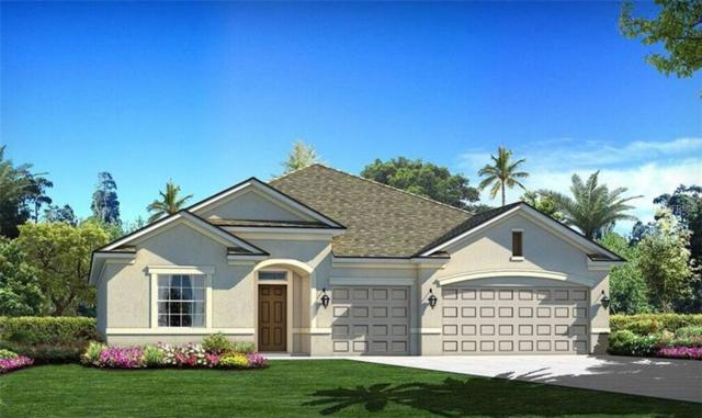 11945 Cinnamon Fern Drive, Riverview, FL 33579 (MLS #T2924533) :: TeamWorks WorldWide