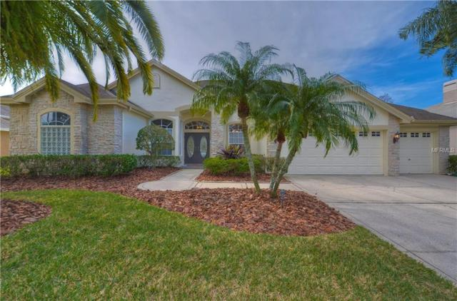 12131 Clear Harbor Drive, Tampa, FL 33626 (MLS #T2924615) :: Revolution Real Estate