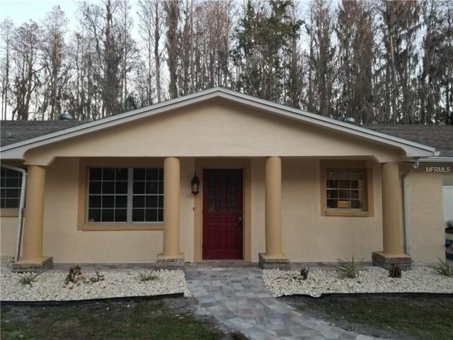 16411 Lake Byrd Drive, Tampa, FL 33618 (MLS #T2924654) :: Revolution Real Estate