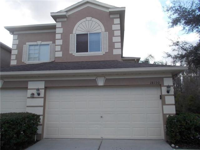 18150 Nassau Point Drive, Tampa, FL 33647 (MLS #T2924713) :: RealTeam Realty