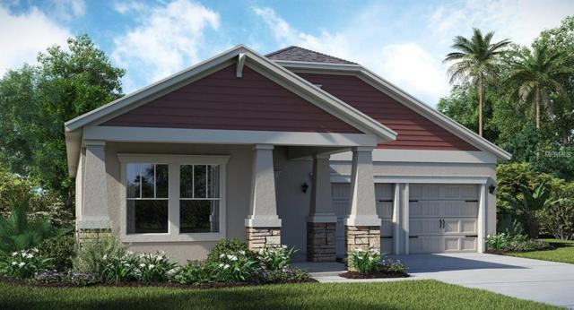 10287 Memoir Avenue, Winter Garden, FL 34787 (MLS #T2924765) :: RealTeam Realty