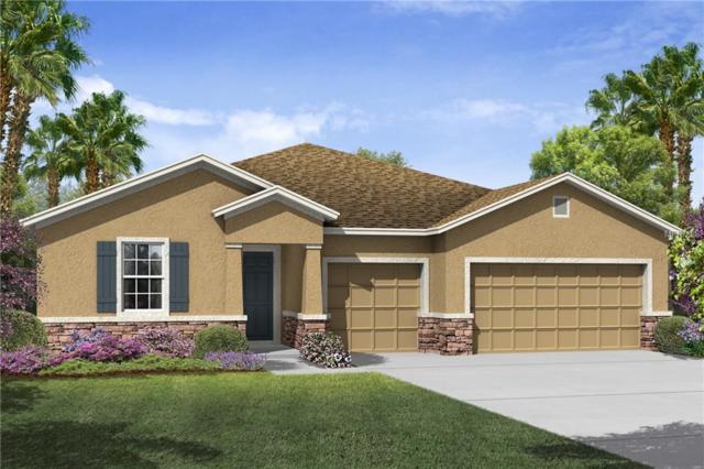 15127 Las Olas Place, Bradenton, FL 34212 (MLS #T2924766) :: Zarghami Group