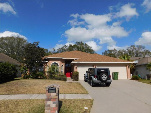 23149 Emerson Way, Land O Lakes, FL 34639 (MLS #T2924780) :: Team Virgadamo