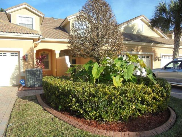 1908 Paw Paw Place, Trinity, FL 34655 (MLS #T2925024) :: KELLER WILLIAMS CLASSIC VI