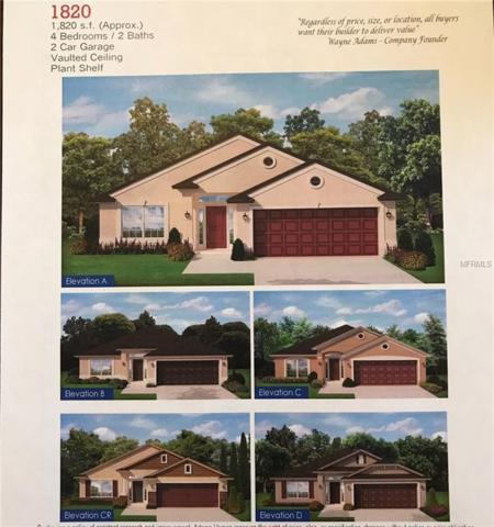 14504 Dunrobin Drive, Wimauma, FL 33598 (MLS #T2925301) :: The Lockhart Team