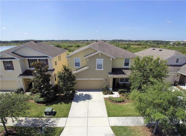 9025 Sienna Moss Lane, Riverview, FL 33578 (MLS #T2925442) :: Griffin Group
