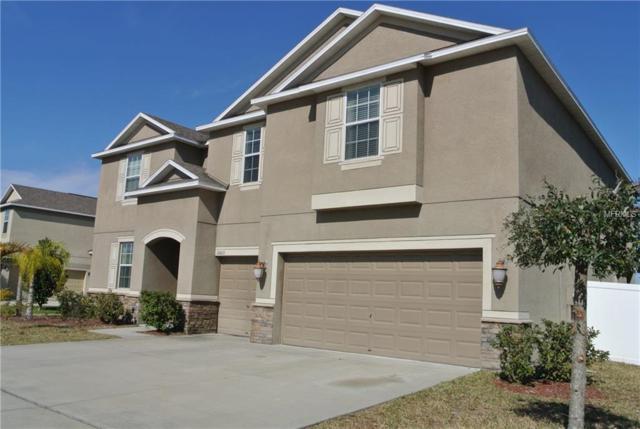 10820 Carloway Hills Drive, Wimauma, FL 33598 (MLS #T2925500) :: The Lockhart Team