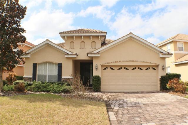 10911 Cory Lake Drive, Tampa, FL 33647 (MLS #T2925778) :: Team Bohannon Keller Williams, Tampa Properties