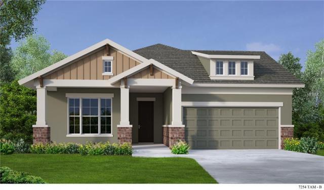 14012 Swallow Hill Drive, Lithia, FL 33547 (MLS #T2925941) :: The Lockhart Team