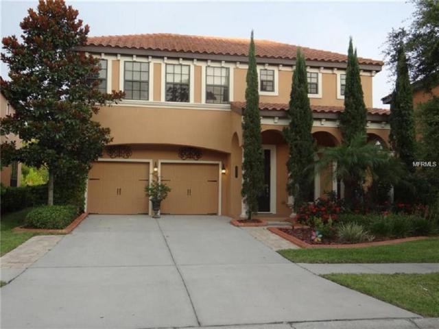 20327 Chestnut Grove Drive, Tampa, FL 33647 (MLS #T2926394) :: Team Bohannon Keller Williams, Tampa Properties