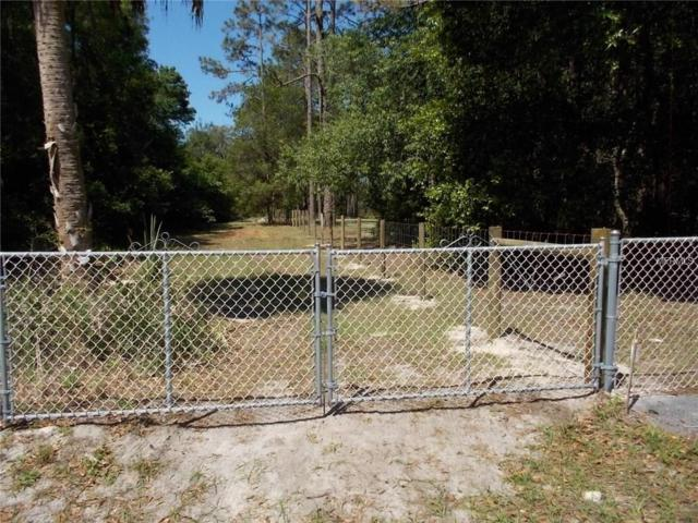 Peach Tree Drive, Spring Hill, FL 34608 (MLS #T2927047) :: Griffin Group