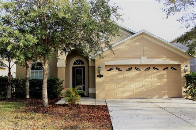 20215 Still Wind Drive, Tampa, FL 33647 (MLS #T2927164) :: NewHomePrograms.com LLC