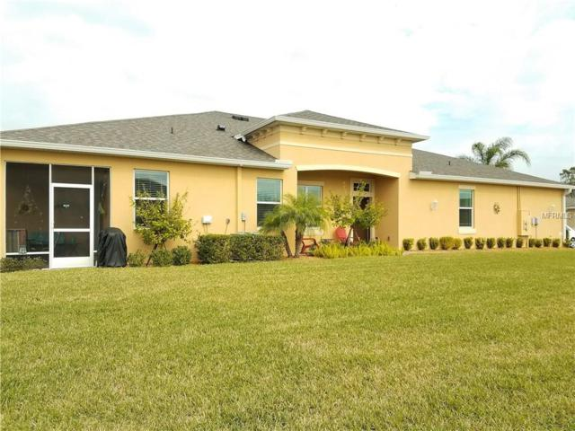 689 Chipper Drive, Sun City Center, FL 33573 (MLS #T2927173) :: The Duncan Duo Team