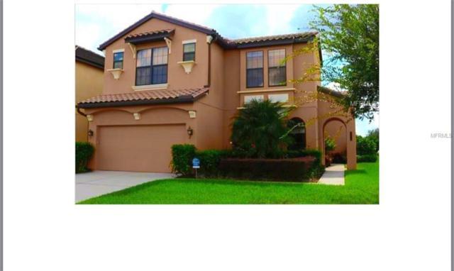 8201 Dunham Station Drive, Tampa, FL 33647 (MLS #T2927456) :: Team Bohannon Keller Williams, Tampa Properties