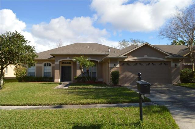 19003 Dove Creek Drive, Tampa, FL 33647 (MLS #T2927778) :: The Fowkes Group
