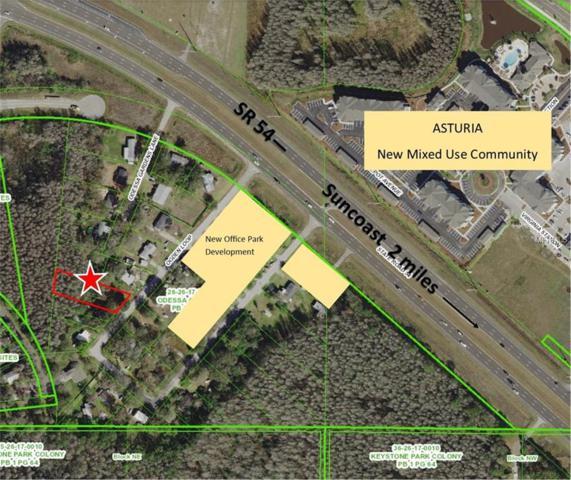 14931 Ogden Loop, Odessa, FL 33556 (MLS #T2927980) :: Team Bohannon Keller Williams, Tampa Properties