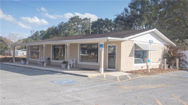37722 Geiger Road, Zephyrhills, FL 33542 (MLS #T2928018) :: The Lockhart Team