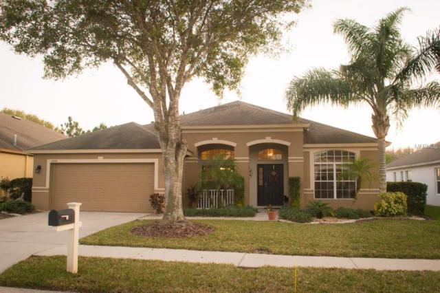 16444 Nikki Lane, Odessa, FL 33556 (MLS #T2928131) :: Team Bohannon Keller Williams, Tampa Properties