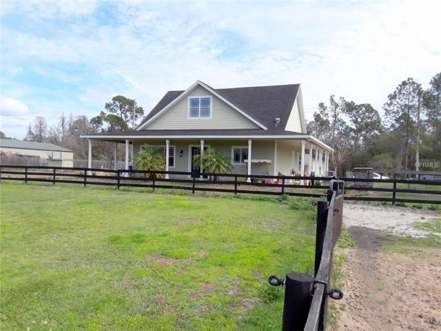 15808 Trackside Drive, Odessa, FL 33556 (MLS #T2928429) :: Team Bohannon Keller Williams, Tampa Properties