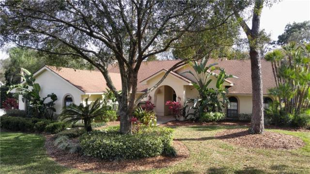 15904 Armistead Lane, Odessa, FL 33556 (MLS #T2928884) :: Team Bohannon Keller Williams, Tampa Properties
