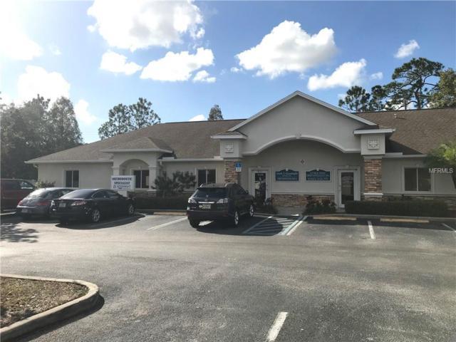 6538 Gunn Highway, Tampa, FL 33625 (MLS #T2928926) :: Cartwright Realty