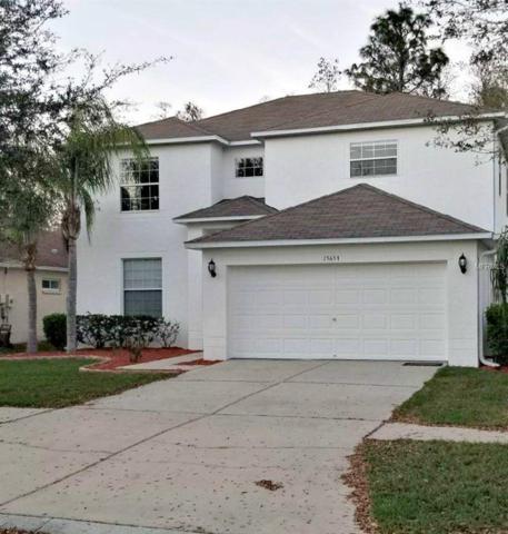 15653 Leatherleaf Lane, Land O Lakes, FL 34638 (MLS #T2928985) :: Cartwright Realty