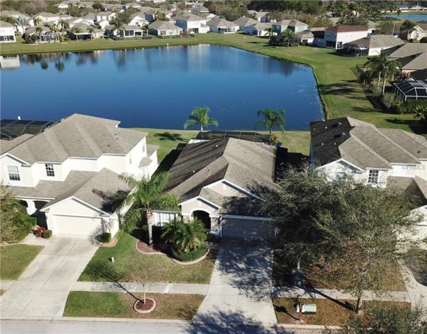 11572 Misty Isle Lane, Riverview, FL 33579 (MLS #T2928987) :: KELLER WILLIAMS CLASSIC VI