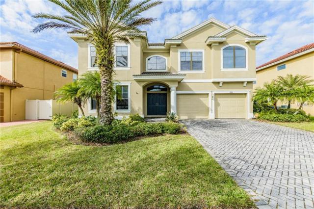 12836 Darby Ridge Drive, Tampa, FL 33624 (MLS #T2929051) :: The Fowkes Group