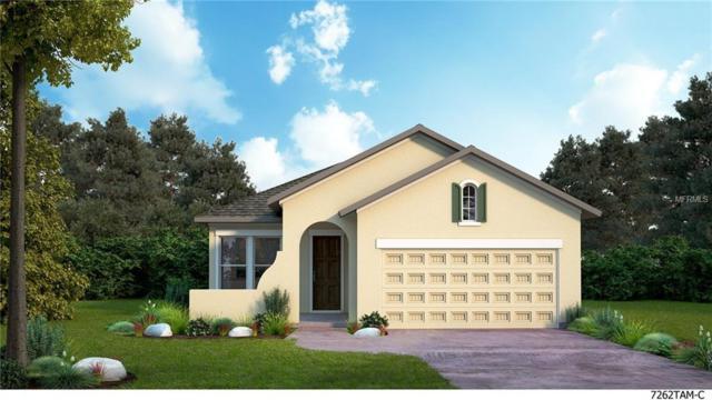 13930 Swallow Hill Drive, Lithia, FL 33547 (MLS #T2929164) :: The Lockhart Team