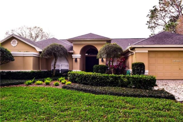 16608 Windsor Park Drive, Lutz, FL 33549 (MLS #T2929188) :: Team Bohannon Keller Williams, Tampa Properties