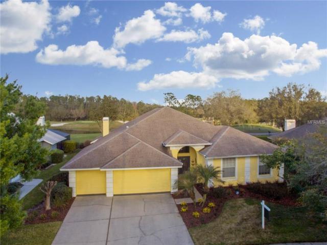 17503 Edinburgh Drive, Tampa, FL 33647 (MLS #T2929271) :: Delgado Home Team at Keller Williams