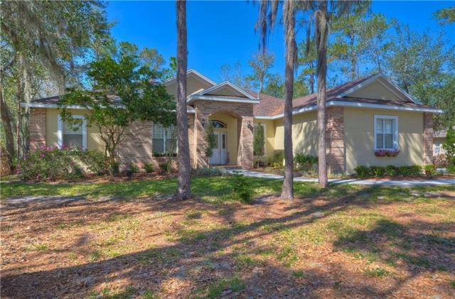 5924 Flatwoods Manor Circle, Lithia, FL 33547 (MLS #T2929332) :: Team Bohannon Keller Williams, Tampa Properties