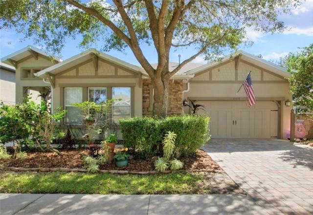 15737 Starling Water Drive, Lithia, FL 33547 (MLS #T2929409) :: Team Turk Real Estate