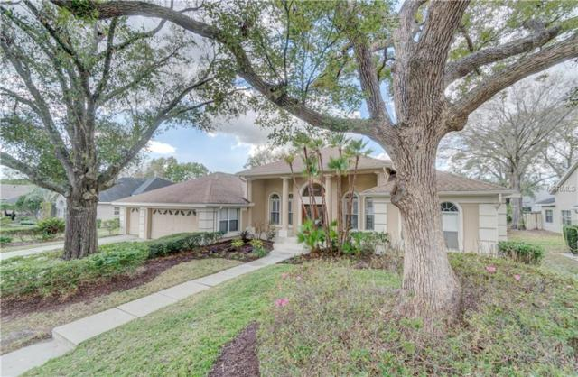 16138 Carden Drive, Odessa, FL 33556 (MLS #T2929420) :: Griffin Group