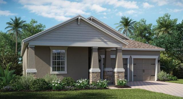 10228 Lovegrass Lane, Orlando, FL 32832 (MLS #T2929455) :: G World Properties