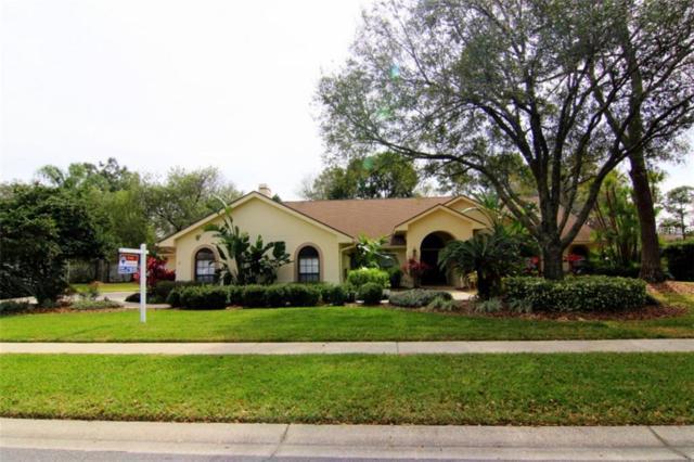 15904 Armistead Lane, Odessa, FL 33556 (MLS #T2929484) :: Team Bohannon Keller Williams, Tampa Properties