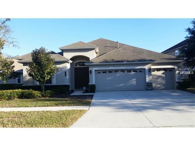 8107 Hampton Glen Drive, Tampa, FL 33647 (MLS #T2929525) :: Team Bohannon Keller Williams, Tampa Properties