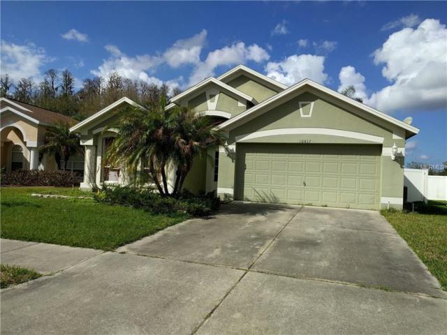30437 Tremont Drive, Wesley Chapel, FL 33543 (MLS #T2929566) :: Delgado Home Team at Keller Williams